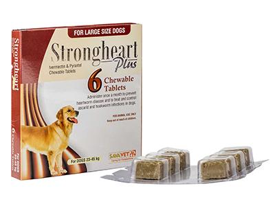 「フィラリア&お腹の虫下しのダブル効果で愛犬を守る」のイメージ画像